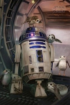 plakat STAR WARS - R2-D2 AND PORGS