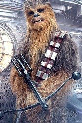 plakat STAR WARS - CHEWBACCA BOWCASTER