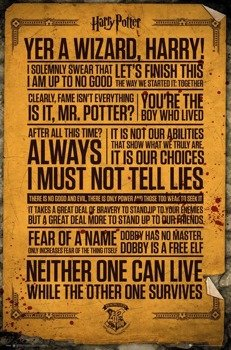 plakat HARRY POTTER - QUOTES