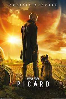 plakat STAR TREK PICARD - PICARD NUMBER ONE