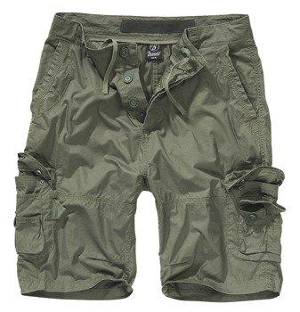 spodnie bojówki krótkie TY SHORTS - OLIVE