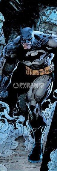 plakat na drzwi BATMAN - PROWL