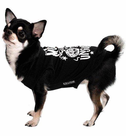 ubranko dla psa KILLSTAR -  FULL MOON